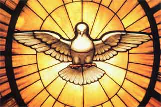 dove representing the Holy Spirit